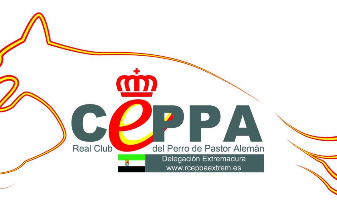 Selección Figurantes Extremadura