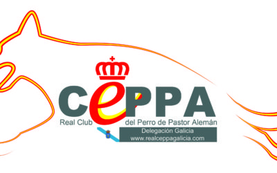 CONVOCATORIA ELECCIONES GALICIA
