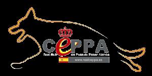 Real CEPPA Siegerschau Valladolid 2019