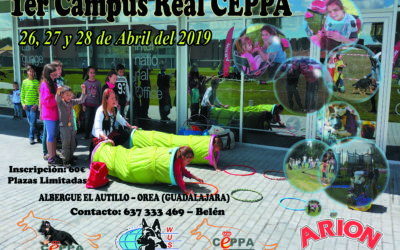 Abierta Inscripciones Campus Real CEPPA