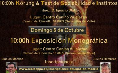 Abierta Inscripciones Delegación Madrid
